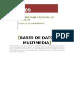 14870298 Bases de Datos Multimedia