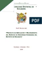 Perfil Proyecto 2010 (1)