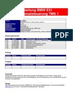 Tempomatsteuerung_TMS1