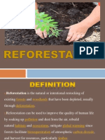 Presentation1ss Reforestation