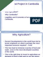 Cambodia Agro Project