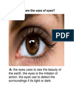 What Are the Uses of Eyes