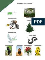 Animale Și Plante Simbol