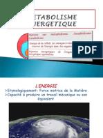 212730968-METABOLISME-ENERGETIQUE