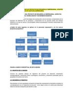 Aparte Libro Proyectos Desarrollo Hhmurcia - Auditoria Financiera (1)