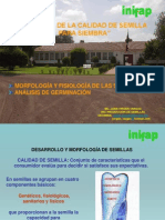 Desarrollo y Morfología de Semillas