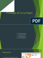 Fisiologia y Semiologia de La Faringe