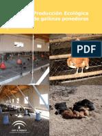 Produccixn EcolxgicaGallinasPonedoras Baja