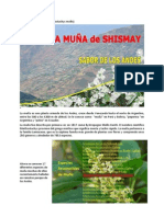 La Muña de Shismay (Minthostachys mollis) Huánuco Perú
