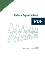 Apostila Cultura_Organizacional_Esp_2_Grafica_01-03-10[1]