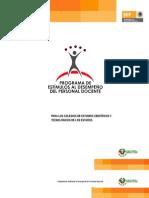 Programa de Estimulo 2013
