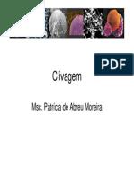 Clivagem