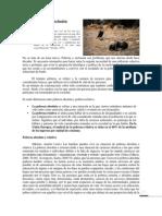 Pobreza y exclusión.docx