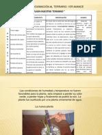laplantaenelterrario-100329103504-phpapp01