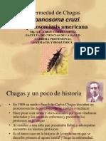 Enfermedad de Chagas Trypanosoma Cruzi