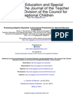 Promoting Adaptive Expertise- A Conceptual Framework for Special Educator