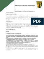 Bases Campeonato Intercurso 2014