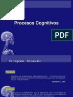 Procesos Cognitivos Clase