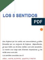 5sentidos-121026161242-phpapp02