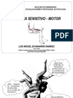 SESION 4. Sistema Sensitivomotor
