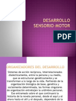 Desarrollo Sensorio Motor 2013