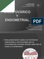 El Ciclo Ovárico y Ciclo Endometrial NO