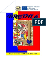 brochure mobilite roumaine