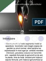 Biomecanica articulatiei genunchiului