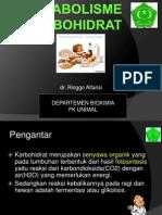 4Metabolisme Karbohidrat