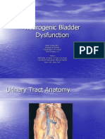 Neurogenic Bladder Dysfunction