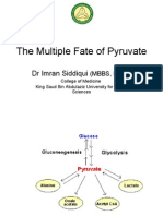The Multiple Fate of Pyruvate