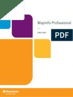 Guia de Usuario Mapinfo 11