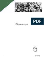 Formation Bridge DU V6.pdf
