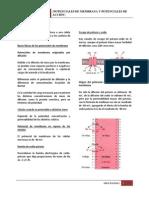 Capítulo 5 - Potenciales de Membrana y Potenciales de Acción