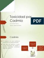 enfermedadescausadasporelcadmio-120816044430-phpapp01