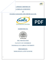 """A PROJECT REPORT ON """"COMPANY OVERVIEW"""" AT GUJARAT ALKALIES AND CHEMICALS LTD."""