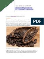 21 Qué Es El Cacao y Dónde Se Produce