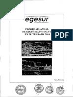 Programa de Seguridad 2014