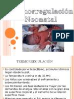 termoregulacineincubadora-110610215927-phpapp01