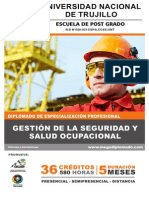 Brochure Diplomado Gsso - Gmp