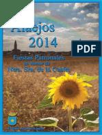 PROGRAMA ALAEJOS 2014 - copia.pdf