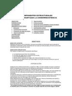 CARTILLA COMPONENTES ESTRUCTURALES