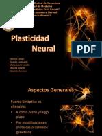 seminarioplasticidad-120627191549-phpapp02