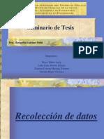 Recolección de Datos Nueva