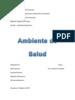 Proyecto- Trabajo Ambiente de Salud
