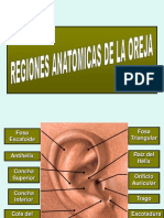 Auriculoterapia .ppt