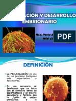 1. Fecundación- Clase 4