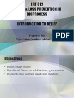 Introduction to Relief