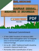1.Dr. Hardi Pranata PERKEMBANGAN HERBAL MEDICINE DI INDONESIA (Bungas Arisudana's Conflicted Copy 2014-02-10)