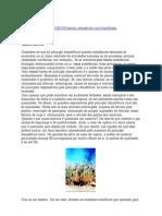 Poluição atmosférica rural no Brasil